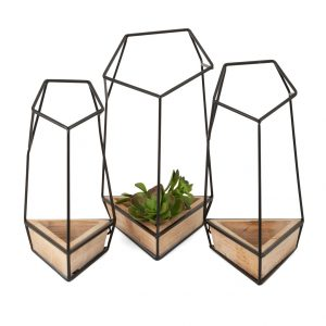 Wall Planters (Set Of 3)